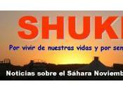 Resumen SHUKRAN noviembre 2012