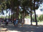 Visita Efeso Casa Virgen Maria (Selcuk)