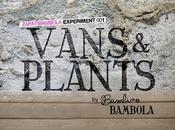 Experimento Vans Plants Primavera Sound