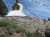 Buda Cerro Otto