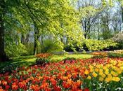 Florecer, natural