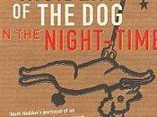 curious incident night-time curioso incidente perro medianoche)