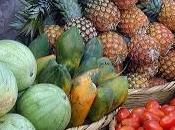 académica habla sobre alimentos orgánicos
