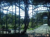 Bicimoka: Parque Araucano