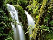 Parques naturales reservas ecologicas lugares hermosos tierra
