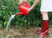 Curso Agricultura Ecológica, teoría práctica