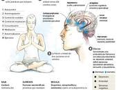 Practicar Yoga mejora salud mental