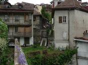 Rehabilitación ecológica Lausanne Ecological Rehabilitation