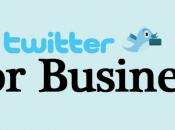 Cómo conseguir clientes twitter (parte