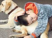 Autismo: mascotas juguetes para desarrollo habilidades sociales
