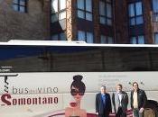 mueve Vino Somontano 2013