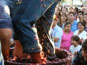 Fiesta Vendimia Valle Maipo 2013