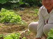 Inseguridad seguridad alimentaria Bolivia