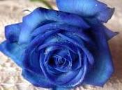 azul llevar esta primavera