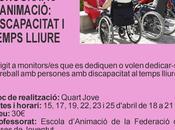 """Curso """"Discapacidad Tiempo Libre"""""""