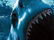 Australiano recibe premio aferrarse tiburón atacaba mujer