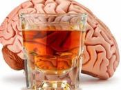 Falsas creencias sobre efectos alcohol