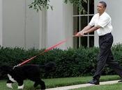 Barack Obama perro ¿Quién pasea quién?