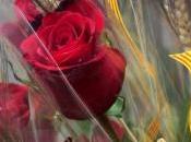 Sant jordi, amor rosa libro!!!