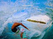 Curl Mentawai 2013