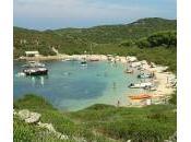 Fondear Menorca. Illa d'en Colom