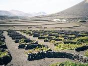 Recorre rutas vino Lanzarote