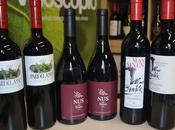 Club vinos vinoscopioadictos mayo 2013