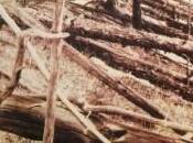 restos meteorito Tunguska presentados pasada semana podrían parecen