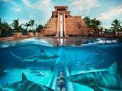 Tobogán acuático bajo tiburones