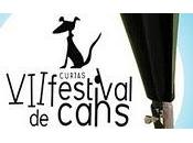 From Cannes Cans