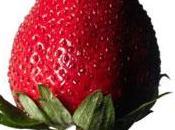 dieta fresa