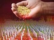 Monsanto reconoce fracaso Europa