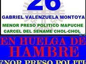 Libertad presos políticos mapuches ¡¡YA!!