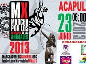 Evento Marcha Animales Junio