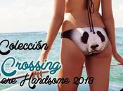 handsome colección bikinis bañadores verano 2013