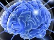 Siete claves para mantener cerebro joven