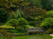 jardín botánico Brooklyn