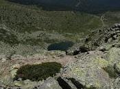 Lagunas, Charcas, Humedales Pozas Sierra Guadarrama (vertiente madrileña)