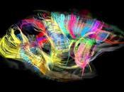 ciencia vida: redefiniendo arquitectura cerebro