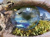 Lecciones Vida: Inteligencia Natural. Nuevo Paradigma Modelo Educativo