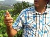 Pedralonga, aquellas piedras, estos vinos.