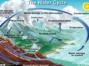 Introducción ciclos biogeoquímicos
