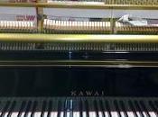 ENTREVISTA JAVIER PERIANES, pianista