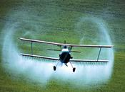 Monsanto, también chocó
