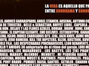 Sonorama ribera 2013: cartel horarios