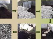 Como convertir suelo contaminado rico nutrientes