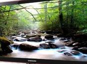 Diferencias entre LCD, Plasma
