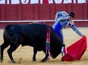"semifinal Certamen escuelas taurinas Malagueta"""