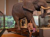 Museo Ciencias Naturales.