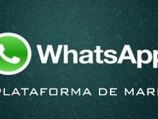 Whatsapp, cinco pasos para convertirlo plataforma campañas marketing